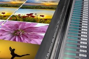 offset machine press print run